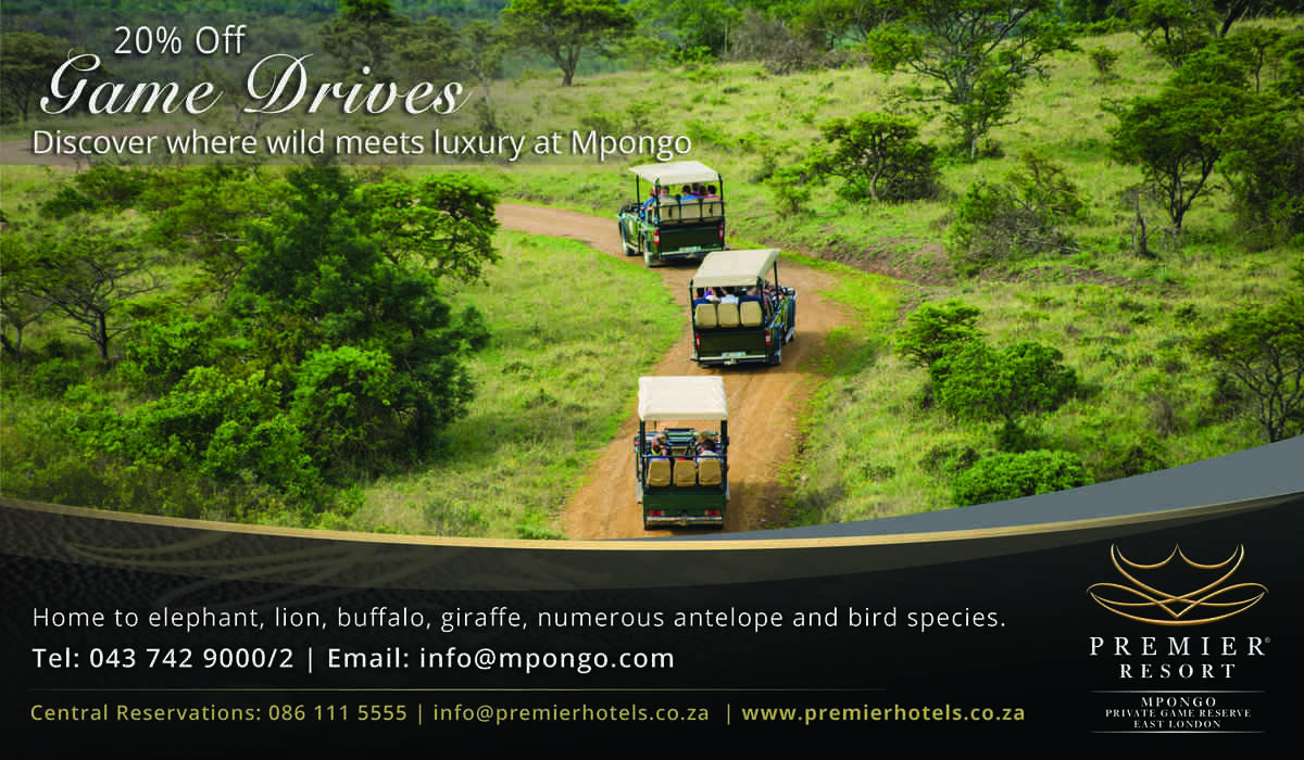 Mpongo Game Drive Special