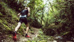 Ultra Trail Drakensberg Running Festival